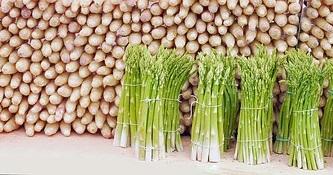 asparagus-1401025__180